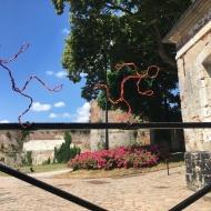 Visitez Montreuil-sur-mer